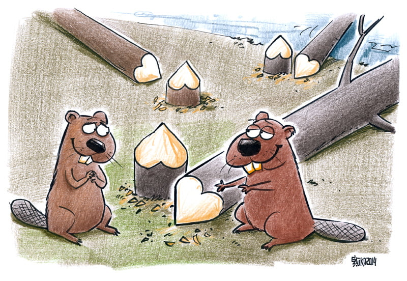 Love cartoon, beaver, tree, Gatis Sluka