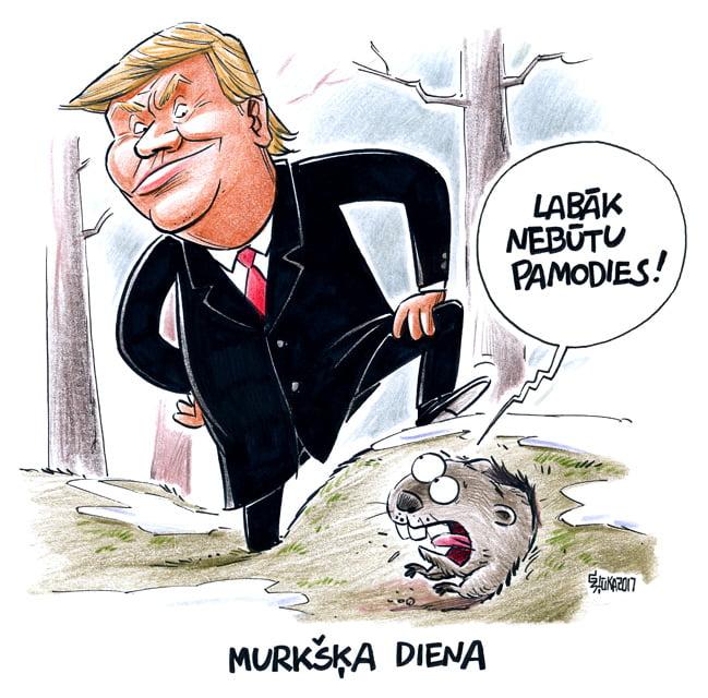 Gatis Šļūka murkšķa diena, Donalds Tramps karikatūra