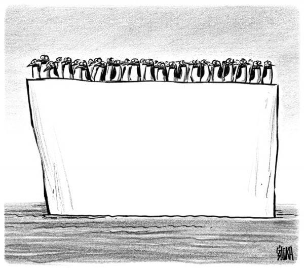 Karikatūru veikals, pingvīni, krekls